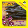"10 Extract Grade A Madagascar Bourbon Whole Vanilla Beans-Pods 5""-7"" Inchers"
