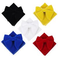 Men Pure Color Bow Tie Handkerchief Velvet Wedding Pre Tied Bowknot Necktie Male