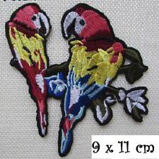 ÉCUSSON PATCH - Couple Oiseau Perroquet ** 9 x 11 cm ** Applique thermocollante