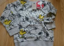 Bnwt 5-6 years Snoopy Jumper from Next Boys