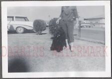 Unusual Vintage Photo Headless Girl Pet Dog & 1956 Chevrolet Chevy Car 768010