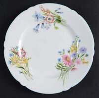 Shelley WILD FLOWERS (GAINSBOROUGH) Dessert Pie Plate 666612