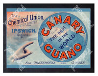 Historic The Chemical Union Limited, Ipswich, c.1900 Advertising Postcard
