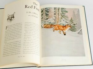 1946 Outdoor Life's Gallery North American Game Frameable Artwork Nature Prints