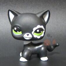Littlest Pet Shop - LPS Figure Patch Short Hair Cat Blythe Black #2249
