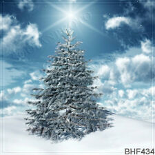 Christmas 10'x10' Computer/digital Vinyl Scenic Photo Background Backdrop BHF434