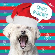 Charity Christmas Cards Pack 10 Funny Westie Dog & Santa Hat Xmas Cards