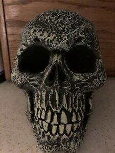 large Halloween Skull Gray Scary
