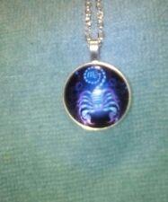 Vibrant Shimmery SCORPIO Glass Dome Necklace Pendant Zodiac Horoscope Birthday