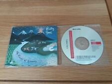 BILLY JOEL RIVER OF DREAMS  3 TRACKS 1993 ( AUSTRIA )