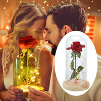 Eternal Rose Flower LED Light Beauty and The Beast In Glass Mothers Day Gifts