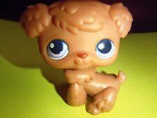 Littlest Pet Shop  POODLE PUPPY DOG. Purple Eyes #39 Brown LPS Rare Purple Eyed