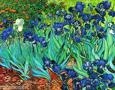 Van Gogh Irises Fine Art Giclee Canvas Print 24''x18''