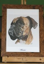 Commissioned Pet Portrait in pencil or Pastel  A2 or A3,