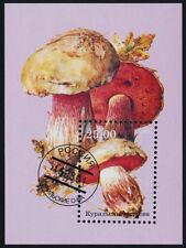 Kuril Island s/s used  (cto) - Mushrooms