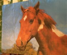 Horse Pillow Sham Standard Size Blue Brown portrait Lot Set of two 2 Pair Cases
