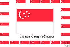 Assortiment lot de 25 autocollants Vinyle stickers drapeau Singapour-Singapore
