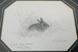 Framed Rabbit Drawing on Paper Signed,  Wildlife Pencil Sketch American Art