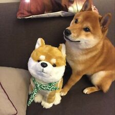 Muuuuuuuco Shiba Inu cute Itoshi no Muco Doge Soft Plush Doll Toys Cosplay Gifts