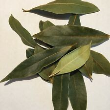 Bay Leaves - Dried Or Fresh - Certified Organic