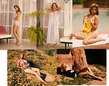 TEDDI SMITH JOB LOT SET 10 PHOTOS 7 X 5  STOCKINGS HOT SEXY NUDE GLAMOUR 1960s
