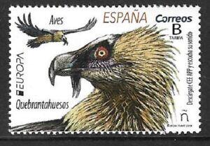 2019    SPAIN  -  EUROPA  /  BIRDS  /  VULTURE   -  MNH
