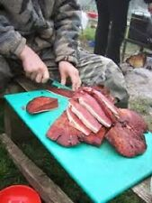 Beef steak mushroom Fistulina hepatica Mycelium 10.000 + fresh seeds Spores $10