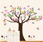 Colorful Owl Tree Removable Kids Room Vinyl Decal Art DIY Wall Sticker Decor