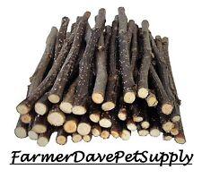 40 Apple Thin Chew Sticks Rabbit,GuineaPig,Chinchil la