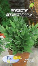 Graines de La livèche - ache des montagnes - herbes - graines - 0,3 gramme