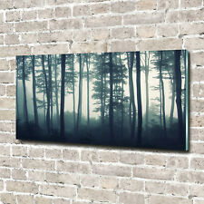 Glas-Bild Wandbilder Druck auf Glas 140x70 Deko Landschaften Wald im Nebel