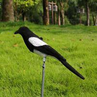 Gazza richiamo trappole uccelli realistica per la caccia Gabbia Uccello Guardare