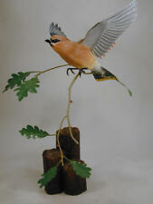 Cedar Waxwing Original Wood Carving