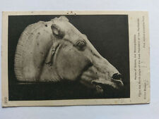 British Museum B&W Postcard 1926 Horse of Selene