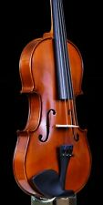 "The ""Allegro 2"" violin set up professionally by Paul Michael Stanton"