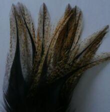 12 PLUMES COQ LEON PARDO COLGADERA flor escoba grade 1 mouche mosca fly