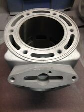 Dragon/RMK 700 Snowmobile Cylinder CAST #3021203-3021340 $125 Core Refund!