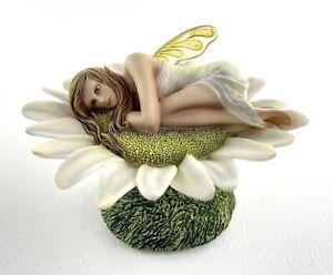 Fairy Site 'Daisy' by Rachael Tallamy RT98016 Figurine 2010 Munro