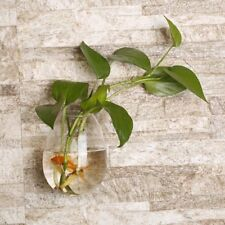 Egg Shaped Transparent Wall Hanging Vase Plant Flower Glass Bottle Home Decor AZ