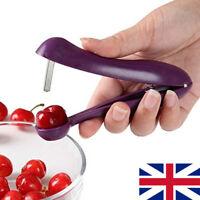 Cherry Pitter Stone Remover Corer Kitchen Olive Seed Pits Machine Handheld  UK