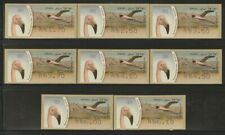 Israel, Flamingo Birds, Values Type 1, Doarmat No.001 ATM MNH Stamps, Lot - 207