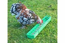 Gaun plastic pigoen, poultry, bird, chick trough feeder from Solway Feeders