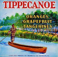 Orlando Florida Arizona Cross Orange Citrus Fruit Crate Label Print