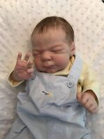 Adorable Reborn Baby Doll Knox By LLE Laura Lee Eagles!!