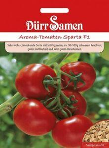 Tomaten Samen Sparta F1 Geschmackstomate Tomatensamen Tomate Busch Aroma Gemüse