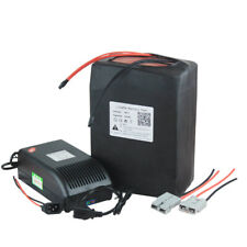 48V 25Ah Lithium LiFePO4 Battery Pack For 1000W-1500W Pedicab Electric Bicycle