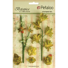 Petaloo Botanica Floral Ephemera - Pistachio