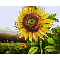 DIY Sunflower Painting By Numbers Kit Hand Painted Canvas Oil Art Picture #8Y