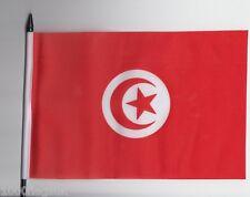 Tunisia Medium Hand Waving Flag