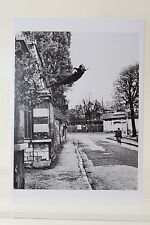 YVES KLEIN, Paris, 1960 by HARRY SHUNK Art-Postcard  NEW
